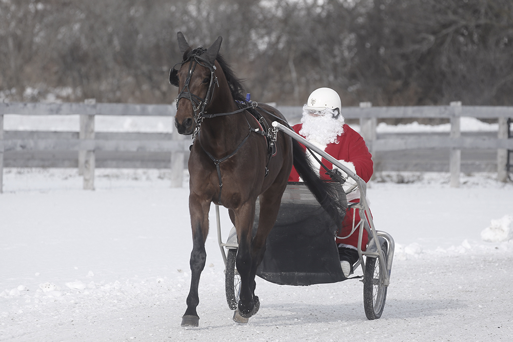 santa driving a racehorse at the christmas open house 2019 111 x 667